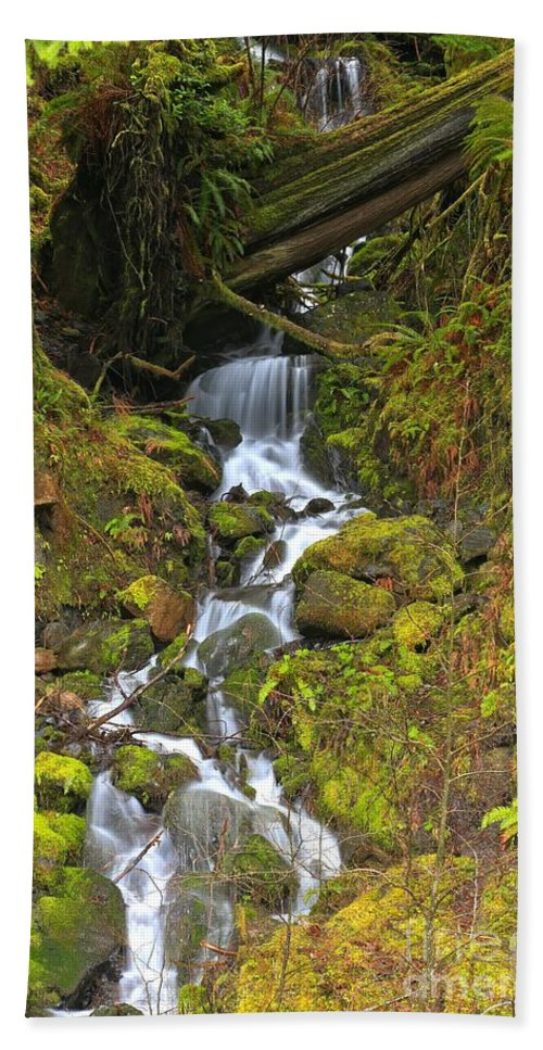 Olympic National Park Hand Towel featuring the photograph Streaming Through Rainforest Rubble by Adam Jewell