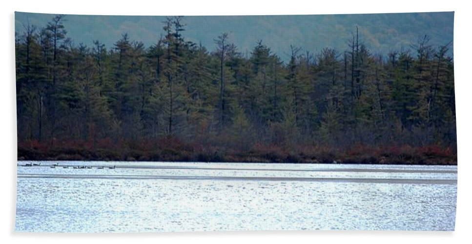 Digital Photograph Bath Sheet featuring the photograph Geese On Labrador Pond by David Lane