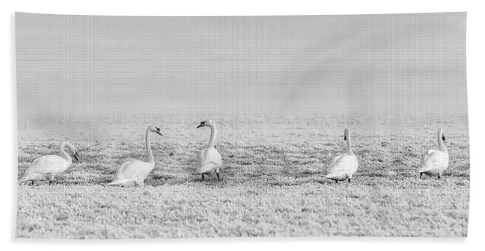 Hoarfrost Hand Towel featuring the photograph Geese Surrounded By Hoarfrost by Pixabay