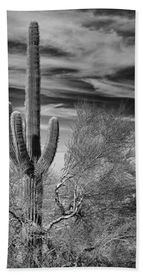 Giant Saquaro Bath Sheet featuring the photograph Giant Saguaro by Kelley King