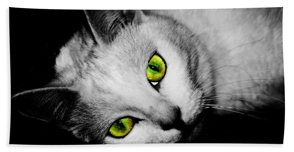 Cats Bath Sheet featuring the photograph Green Eyes by Angie Tirado