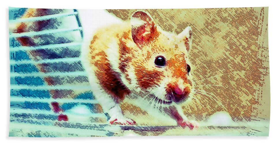 Animal Hand Towel featuring the photograph Hamster by Tom Gowanlock