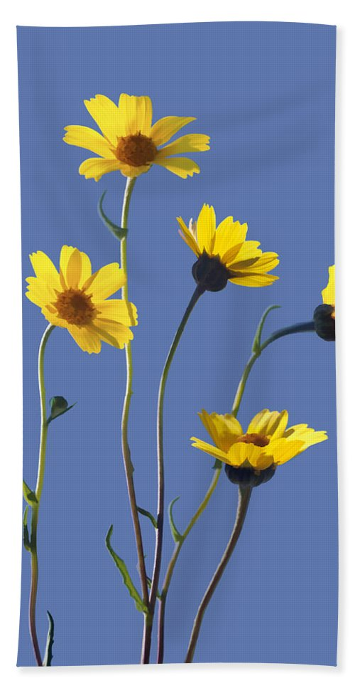 Daisy Bath Towel featuring the digital art Happy Daisies II by Sharon Foster