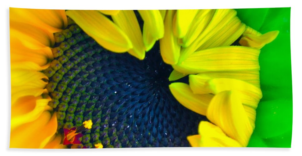 Photograph Of Sunflower Bath Sheet featuring the photograph In The Beginning by Gwyn Newcombe