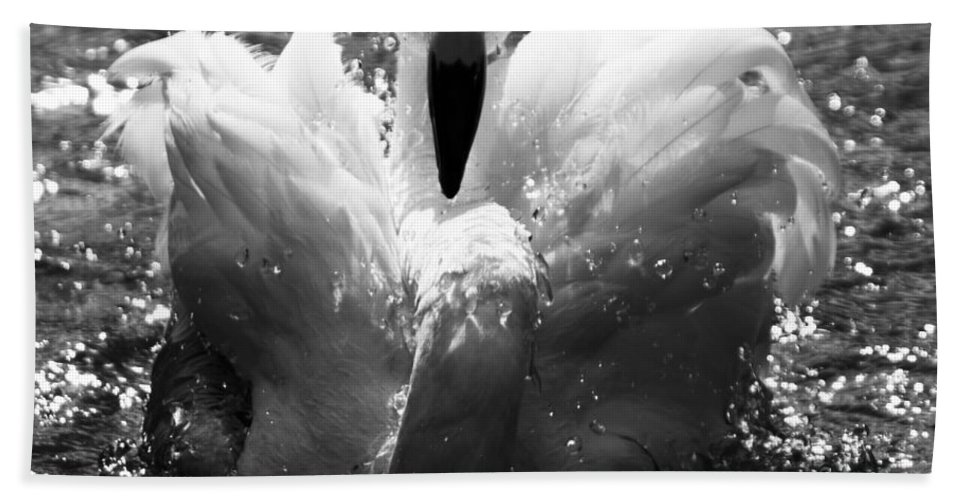 Flamingo Bath Sheet featuring the photograph In The Water by Angel Ciesniarska