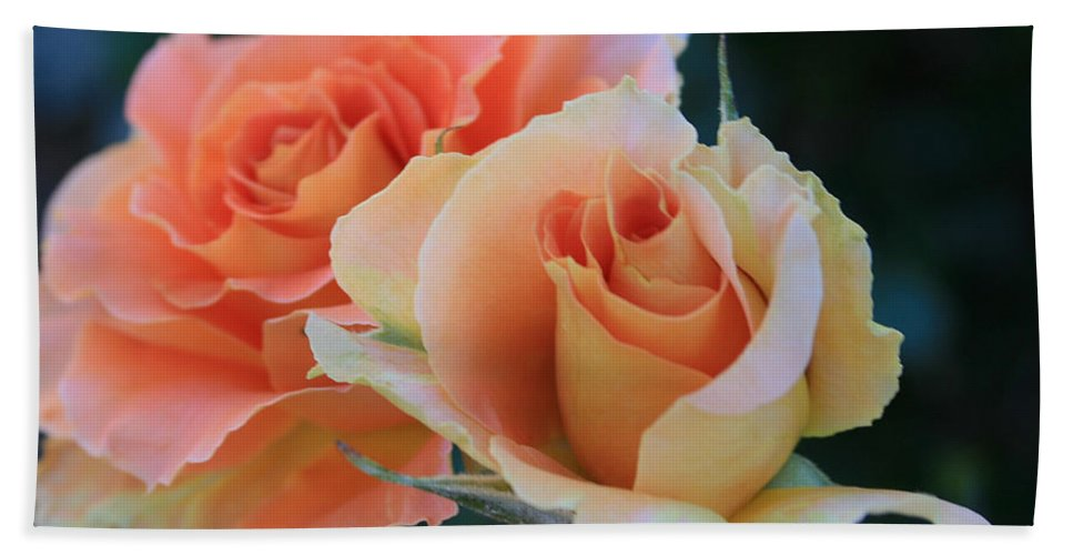 Rose Bath Sheet featuring the photograph Jacob by Marna Edwards Flavell