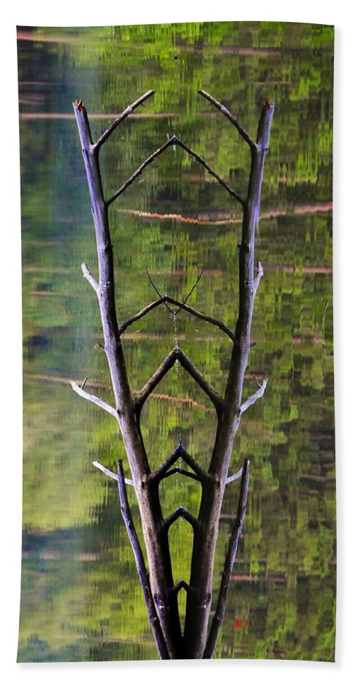 Photography Bath Towel featuring the photograph Jacob's Ladder by Skip Hunt