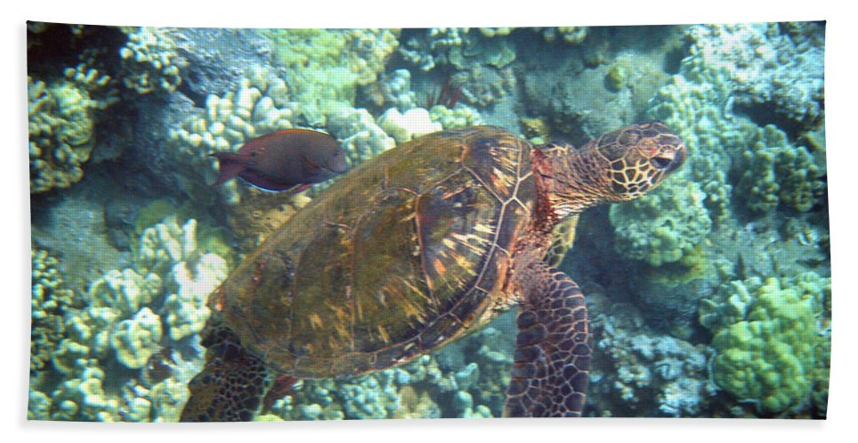 Sea Turtle Hand Towel featuring the photograph Just Tagging Along by Angie Hamlin