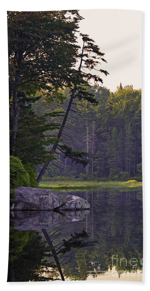 Art Hand Towel featuring the photograph Lakeside by Joe Geraci