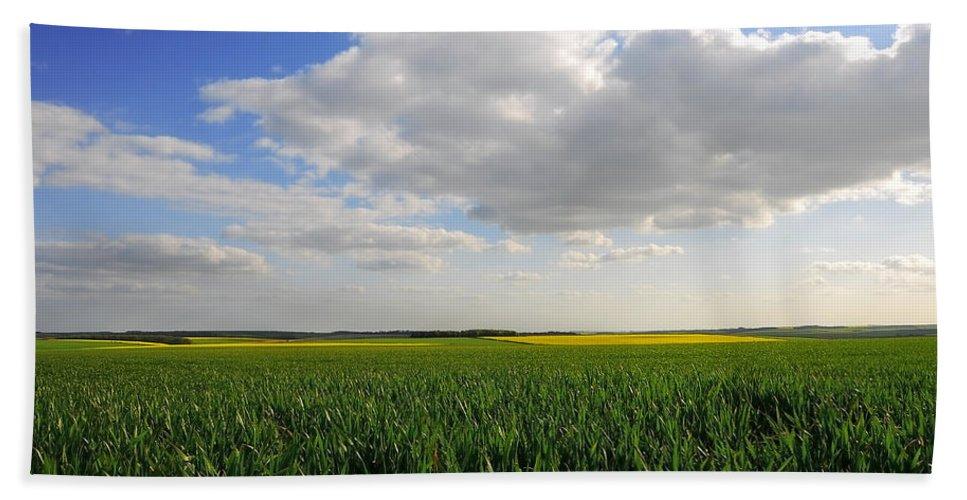 Field Bath Sheet featuring the photograph Landscape by Svetlana Sewell