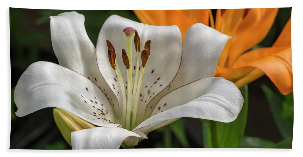 Flowers Hand Towel featuring the photograph Lilies by Bruce Frye