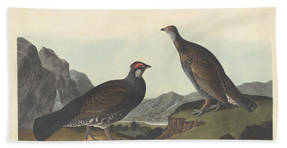 John James Audubon Hand Towel featuring the painting Long-tailed Or Dusky Grous by John James Audubon