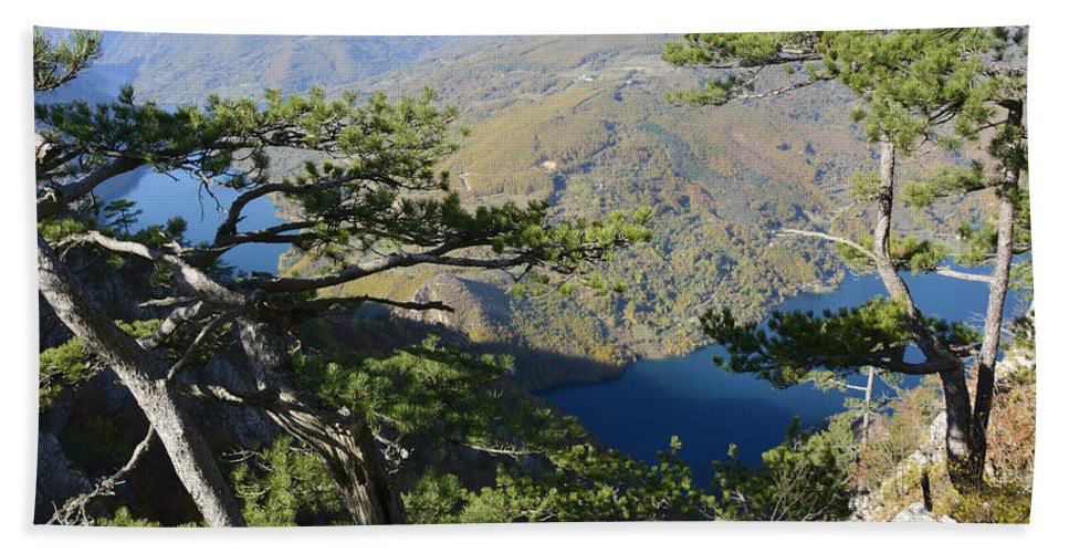 Lake Hand Towel featuring the photograph Look At The Pine Trees And The Lake by Predrag Lukic