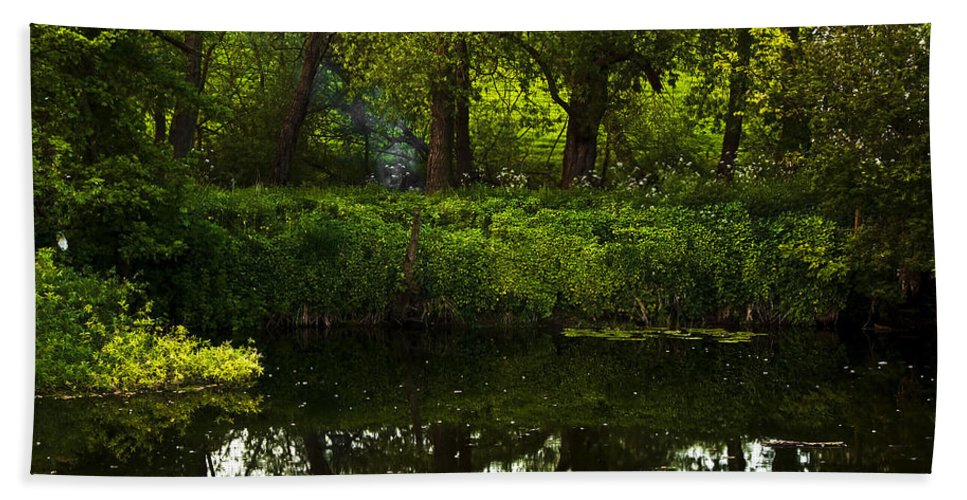 Countryside Bath Sheet featuring the photograph Magic Forest by Svetlana Sewell