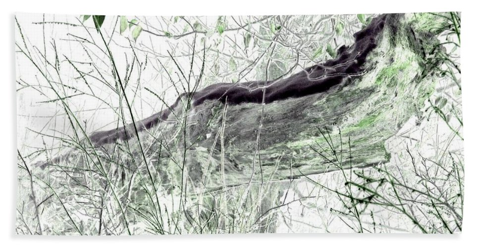 Forest Hand Towel featuring the digital art Misty Morn by Will Borden