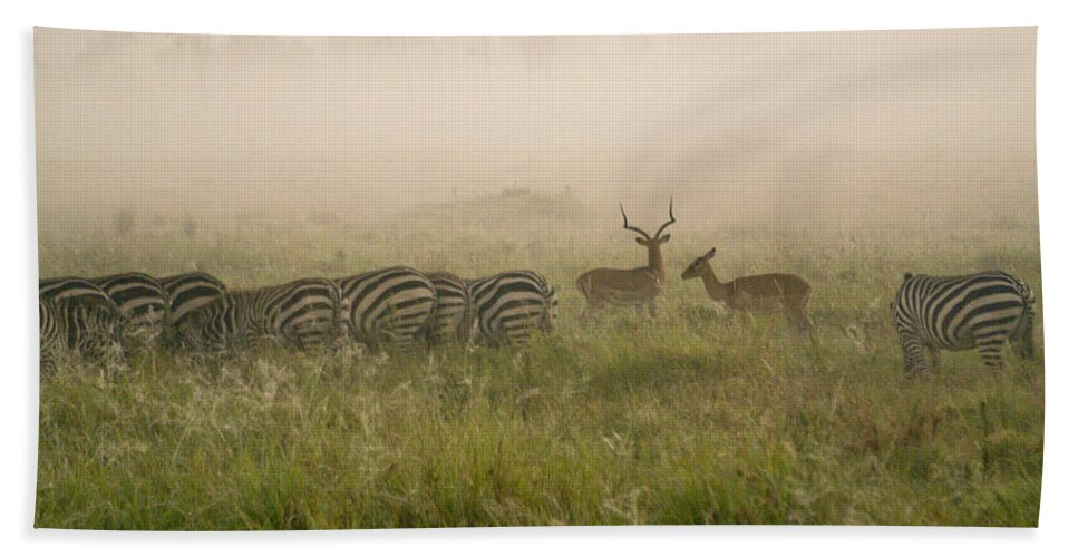 Africa Hand Towel featuring the photograph Misty Morning On The Savannah by Michele Burgess