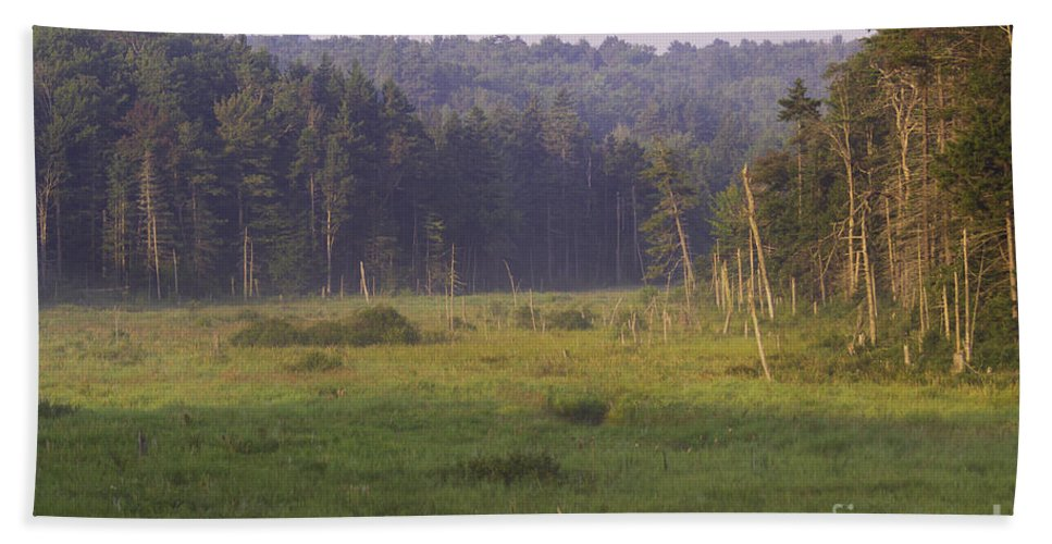 Art Hand Towel featuring the photograph Mountain Swamp by Joe Geraci