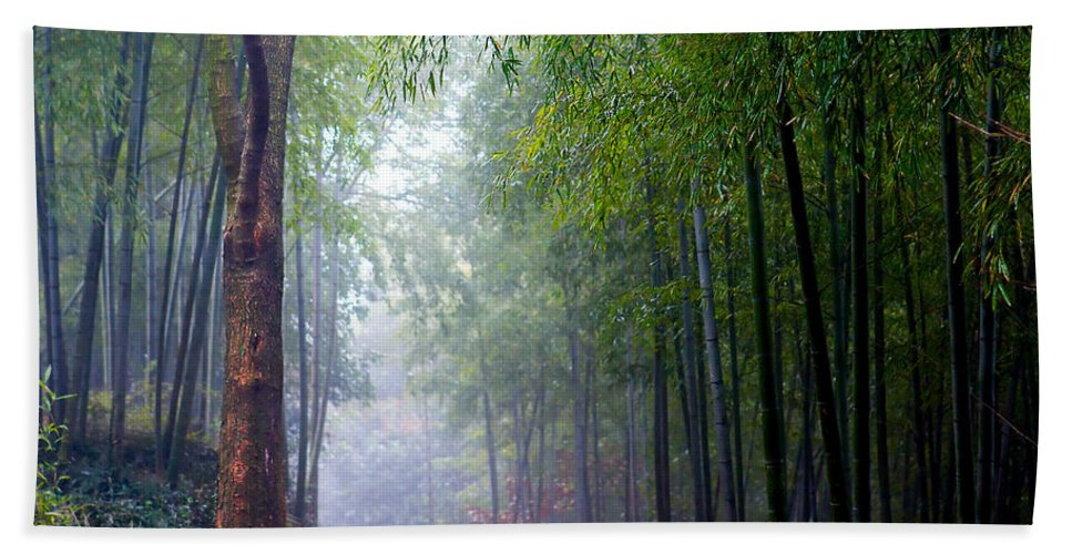 Trees Hand Towel featuring the photograph Mountain Trail by James O Thompson