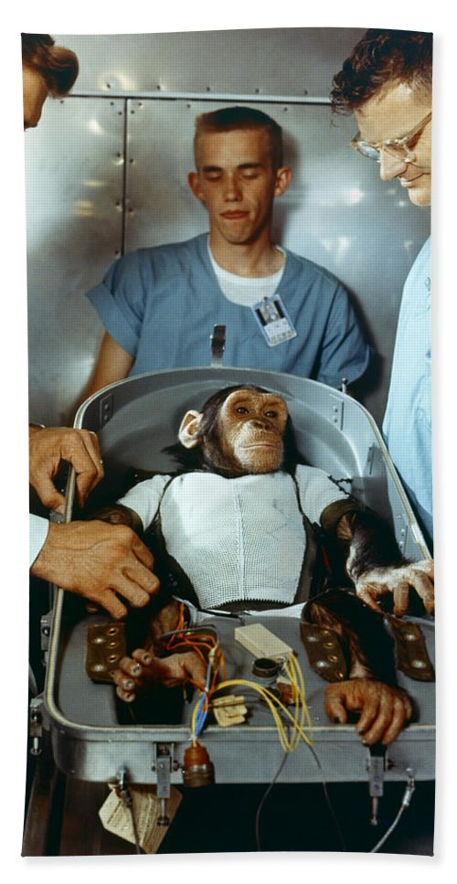 1961 Bath Sheet featuring the photograph Nasa Chimpanzee, 1961 by Granger