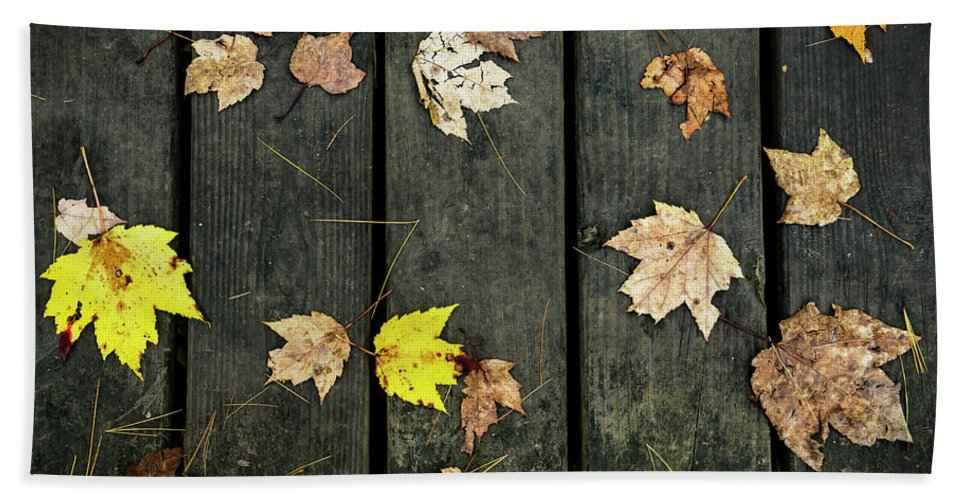 Fall Hand Towel featuring the photograph Original Autumn Foliage by Enrico Della Pietra