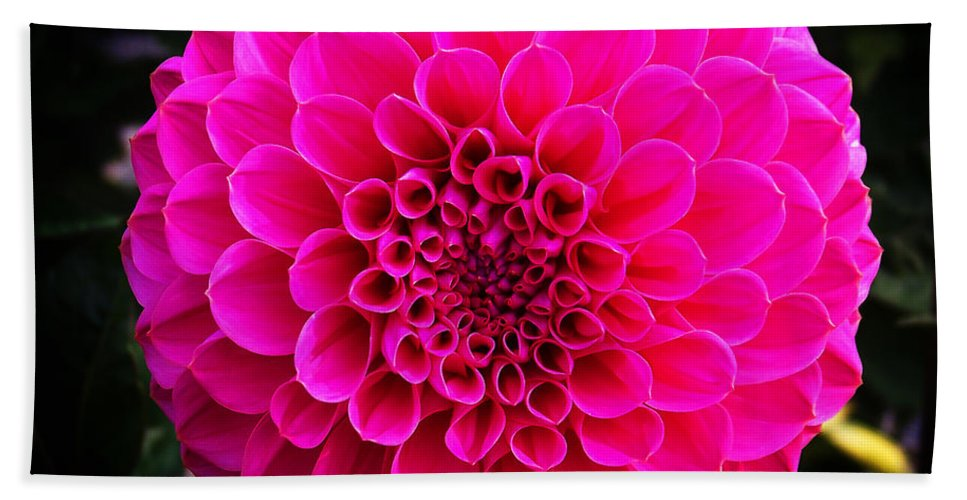 Flower Bath Towel featuring the photograph Pink Flower by Anthony Jones