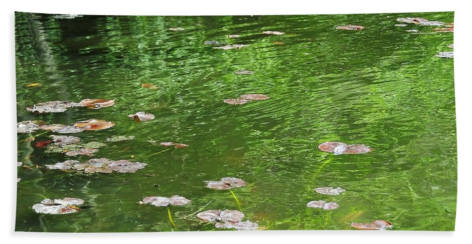 Water Bath Sheet featuring the photograph Pond by Svetlana Sewell