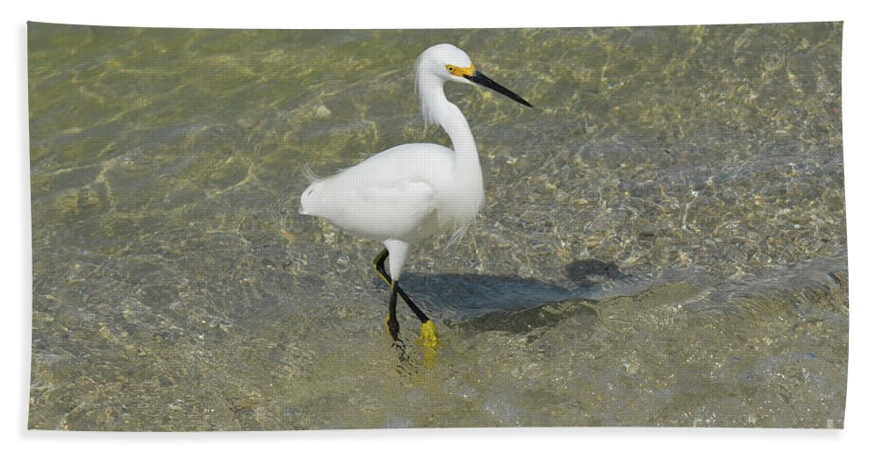 Egret Bath Sheet featuring the photograph Posing White Egret Bird by DejaVu Designs