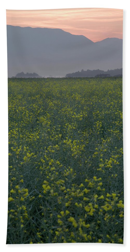 Brnik Bath Sheet featuring the photograph Rapeseed Dawn by Ian Middleton