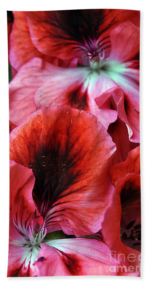 Clay Bath Towel featuring the photograph Red Floral by Clayton Bruster
