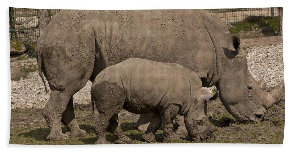 Rhinoceros Bath Towel featuring the photograph Rhinoceros by FL collection