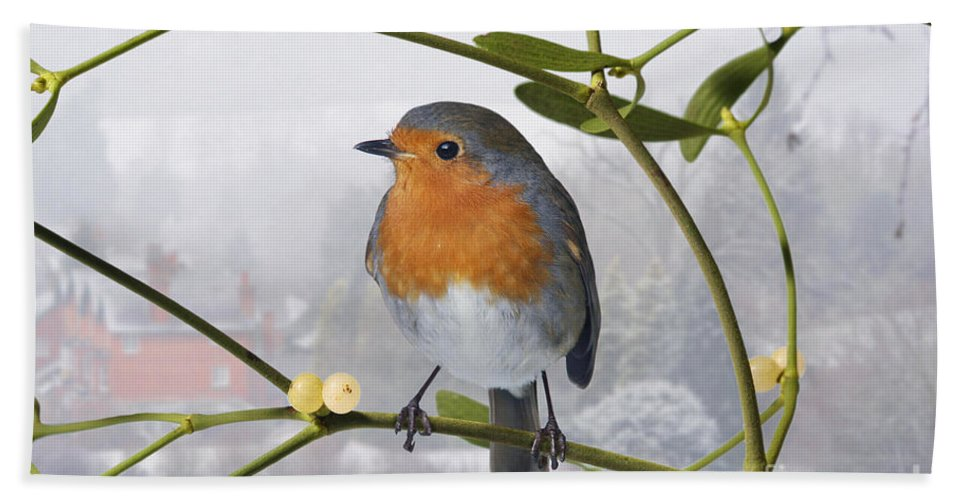 European Robin Hand Towel featuring the photograph Robin On Mistletoe by Warren Photographic