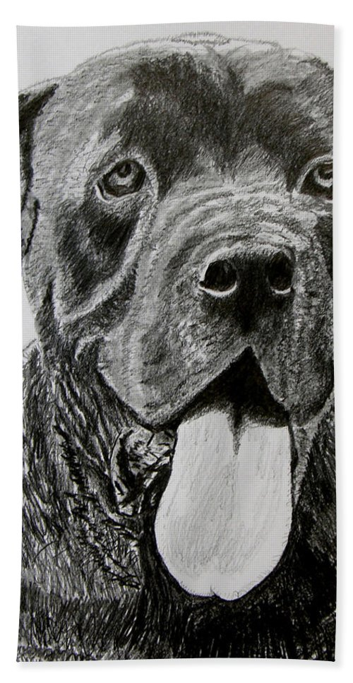 Dog Portrait Bath Towel featuring the drawing Sampson by Stan Hamilton