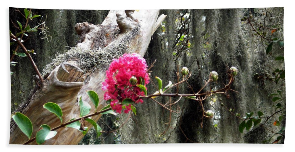Savannah Bath Sheet featuring the photograph Savannah by Mindy Newman