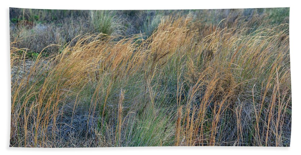 Sea Oats Hand Towel featuring the photograph Sea Oats by Spencer Studios