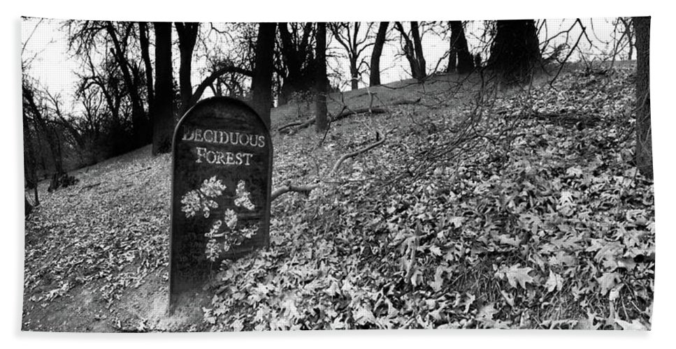 Forest Bath Sheet featuring the photograph Sign In The Forest by Douglas Craig