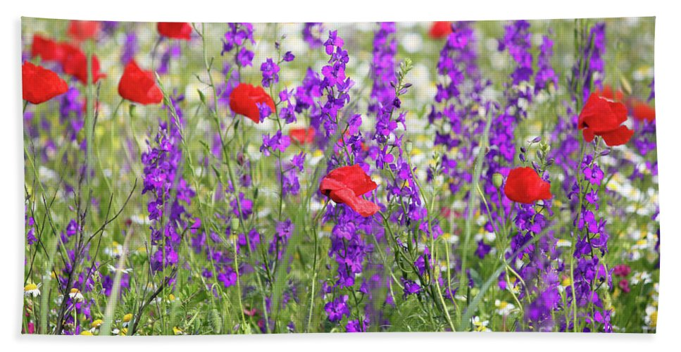 Camomile Hand Towel featuring the photograph Spring Meadow With Wild Flowers by Goce Risteski