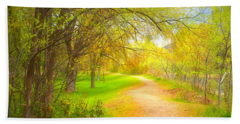 Path Hand Towel featuring the photograph Spring Pathways by Tara Turner