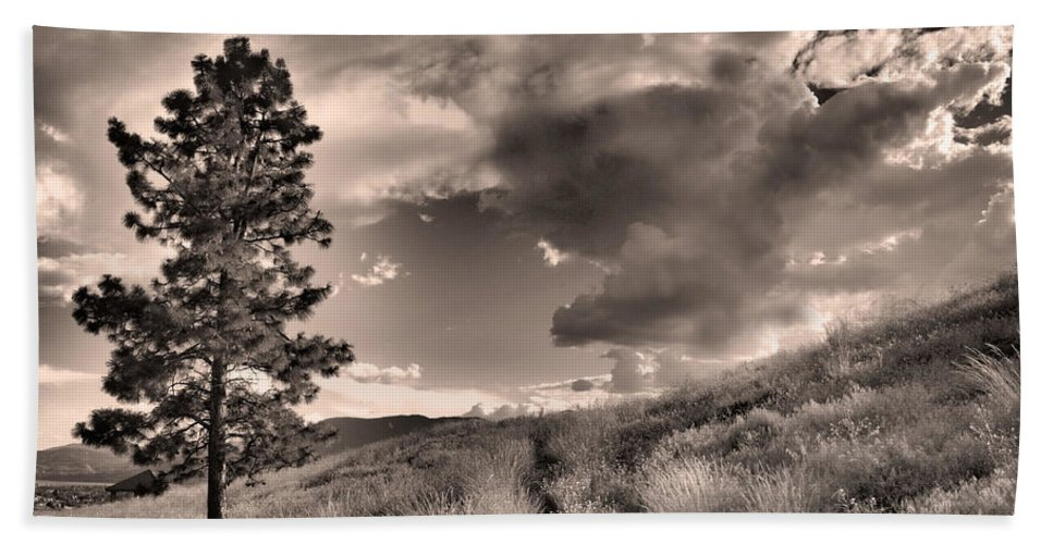 Sepia Hand Towel featuring the photograph Summer Skies by Tara Turner