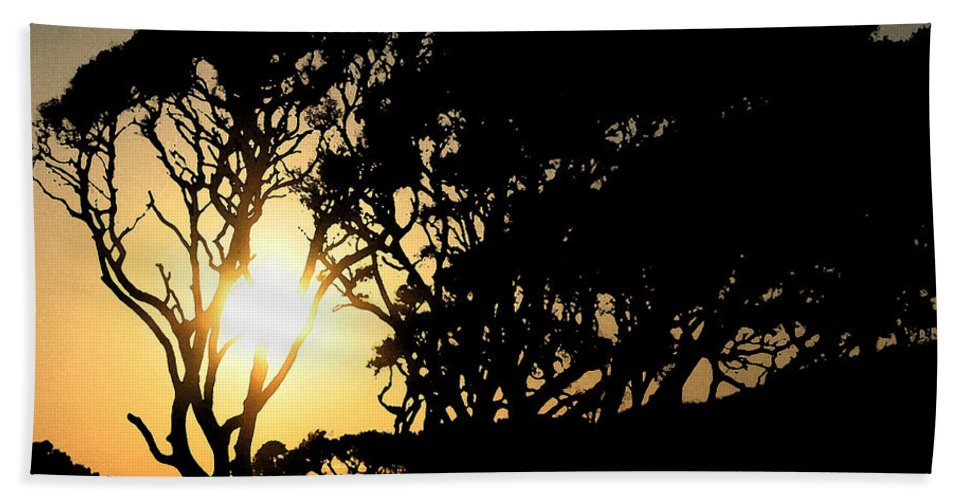 Tree Bath Sheet featuring the digital art Sunset Silhouette by Stacey May