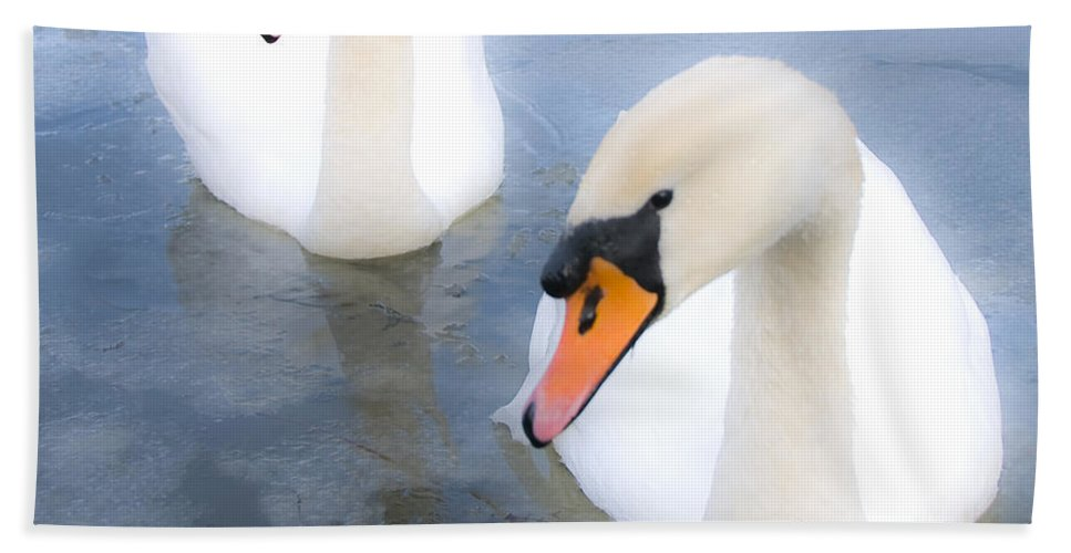 Swan Hand Towel featuring the photograph Swans by Svetlana Sewell