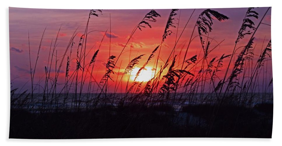 Sunrise Hand Towel featuring the photograph The Adventurous Ones by Michiale Schneider
