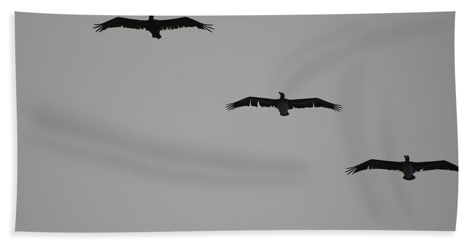 Black And White Bath Towel featuring the photograph The Birds by Rob Hans