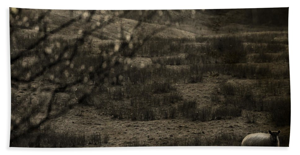 Easter Bath Sheet featuring the photograph The Countryside by Angel Ciesniarska