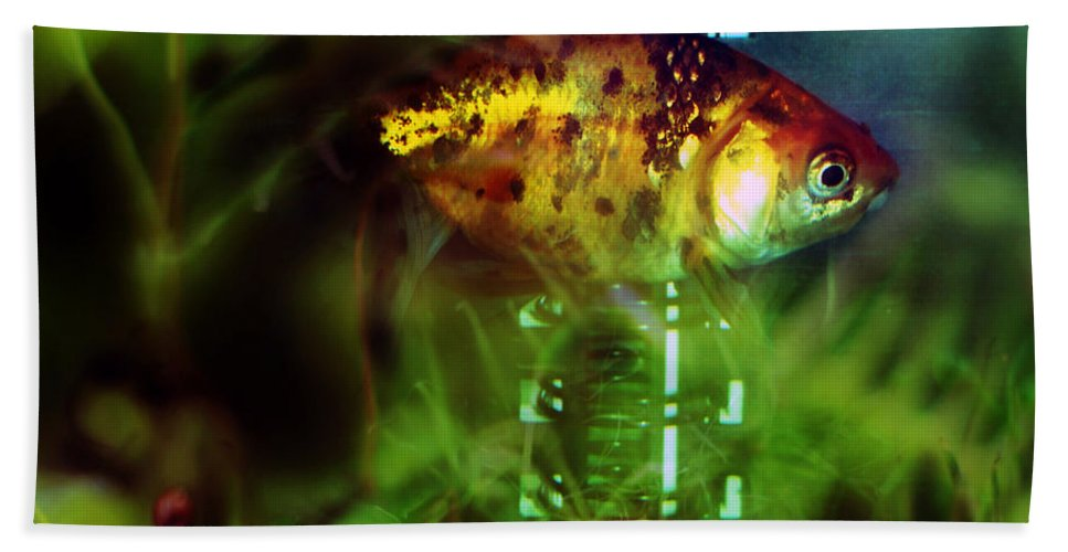Fish Hand Towel featuring the photograph The Goldfish by Angel Ciesniarska