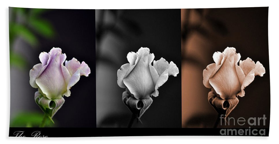 Clay Bath Towel featuring the photograph The Rose by Clayton Bruster