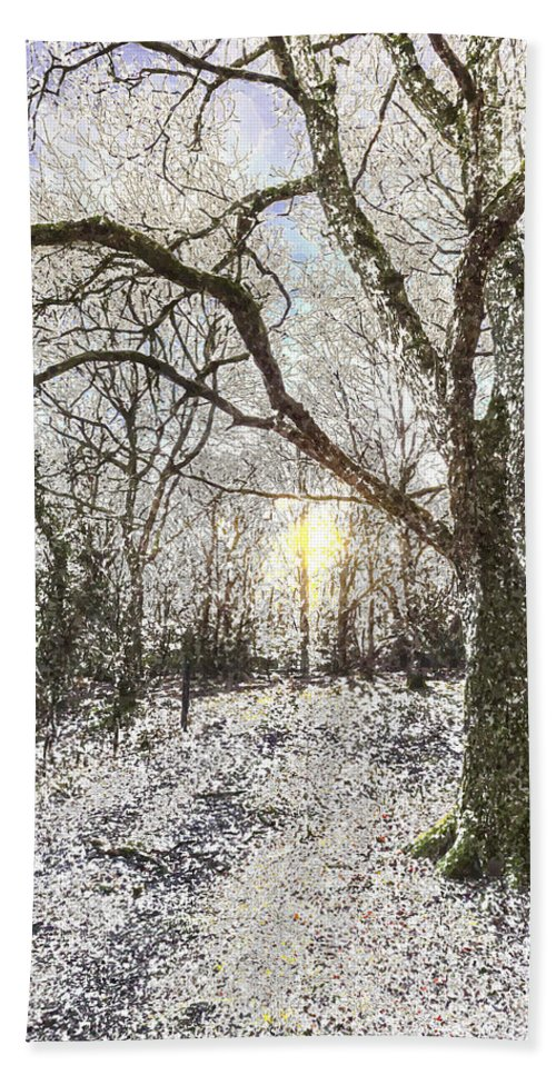Forest Hand Towel featuring the photograph The Snow Forest Art by David Pyatt