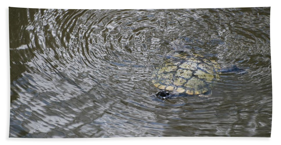 Water Bath Towel featuring the photograph The Swimming Turtle by Rob Hans