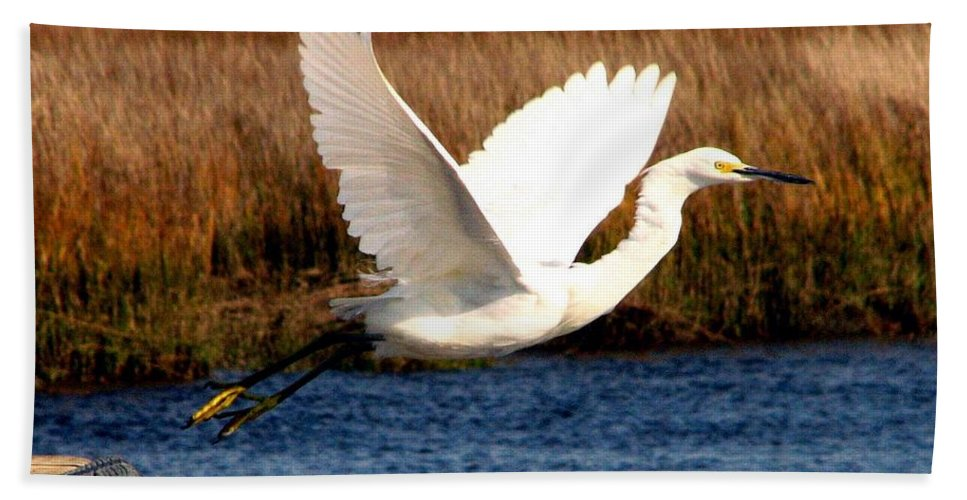 Egret Hand Towel featuring the photograph The Takeoff by J M Farris Photography