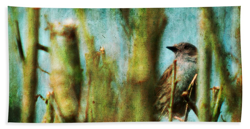 Thrush Bath Sheet featuring the photograph The Thrush by Angel Ciesniarska