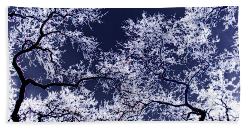 Tree Bath Sheet featuring the photograph Tree Fantasy 17 by Lee Santa